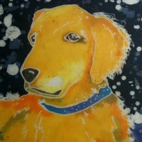 Batik of Jewel.  Quite possibly the best dog in the entire world