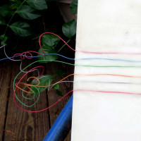 Telephone Wire Detail